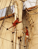 eye-of-the-wind---operation-drake_15601610252_o (christopher sainsbury) Tags: operationdrake eyeofthewind atlantic pacific sea sky sail sailing sailingship sailingboat people adventure