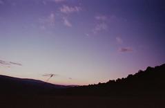 Remains of the day (michele.palombi) Tags: tuscany sunset film 35mm fujifilm venus 800asa colortec nikon fe2
