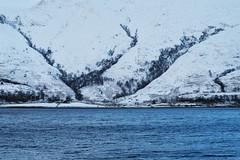 DSCX7916_f_3 (Bob_Last_2013) Tags: snow scottishwinter scottishhighlands
