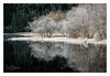 Loch Chon (NorthernXposure) Tags: chon landscape loch scotland trossachs