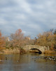 Gapstow Bridge Central Park December 2017 (Scott Yeckes) Tags: ducks gapstowbridge landscape nyc nature newyork overcast thepond winter aypclub centralpark centralparknyc citygarden classicmanhattan classicnewyork classicnyc clouds cloudy historicmanhattan historicnewyork historicnyc mallards manhattan northernview oldmanhattan oldnewyork oldnyc onlyinnewyork sky streetphotography trees uppereastside vintage vintagenewyork vintagenyc water waterview