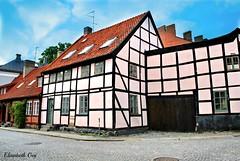 LUND 2009 129 (Elisabeth Gaj) Tags: elisabethgaj lund sweden szwecja sverige skåne europa architecture building