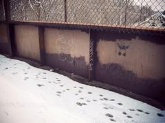 (prairiestateeffects) Tags: ccfpd forestpreserve trail bridge overpass northbranch caldwell oakton mortongrove niles illinois 02182018 smurf smerf panda stencil graffiti