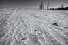 Winter desert (citrusjig) Tags: pentax k5iis sigma1020mmf456 snow winter field blackandwhite toned