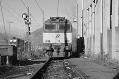 domo II set 61 #27 (train_spotting) Tags: beuracardezza domoii tigre tigrone e652080 trenitaliacargo trenitalia ticargo divisionecargo mir merciitaliarail nikond7100