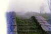 steps (luciferslunarresort) Tags: fuji color fujifilm superia400 35mm minolta green superia xtra 400 x570 rokkor