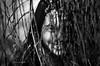 cucù settete (pamo67) Tags: pamo67 ritratto portrait pergioco forplay volto face occhio eyes bn salice willow sorriso smile monochrome bw blackwhite bianconero people pasqualemozzillo ombre shadows cuckooboo