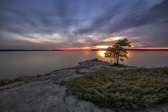 Killbear Provincial Park Sunset (angie_1964) Tags: killbearprovincialpark ontario canada sunset sky cloud tree color colour nikond850 landscape nature seascape georgianbay water