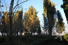 Castello_Fumone_22