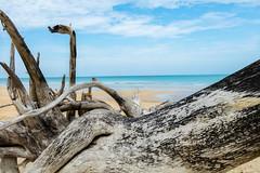 20180225-_MG_9928 (leonbrest) Tags: thailand beach meer ufer durchblick strand