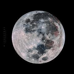 Rare Super Blue Blood Moon (-> LorenzMao <-) Tags: superbluebloodmoon supermoon fullmoon bloodmoon coloredmoon moon bluemoon quebeccanada canada pointeclaire montreal