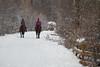 Walk On Horseback (Ernst_P.) Tags: aut inzing österreich tirol reiter pferd gaisau samyang walimex 135mm f20 tyrol austria autriche caballo horse
