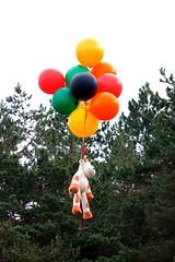 Πέτα! (philos from Athens) Tags: picmonkey cowballoonscolormountainparnithaathenslovegreecereasontovisitgreecefilmmakingoffilmmaking greeksky fly flyingwithballoons ballons mountain parnitha film makingof filmmaking cow surreal surrealistic