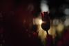 20180113-DS7_6536.jpg (d3_plus) Tags: bokeh building d700 屋外 thesedays 風景 tamronspaf90mmf28macro11 都会 architecturalstructure 建築物 船 ボケ sea 路上 日常 遊園地 自然 海岸 景色 tamron90mm street plant ニコン sky park architectural tamronspaf90mmf28 japan nature streetphoto tamronmacro amusementpark dailyphoto nikon 島 花 tamronspaf90mmf28macro flower daily spaf90mmf28macro11 outdoor 路上写真 マクロ 植物 海 散歩 scenery nikond700 172e macro tamron urban タムロン 172en island 公園 日本 bloom beach 空 ストリート