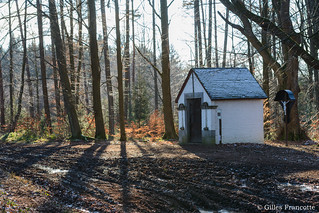 Chapel in the woods.