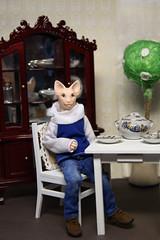 DSC01356 (vulpesAnch) Tags: bjd dollhouse dollminiature bjddoll bjdminiuture artistdoll artbjddoll artdoll catdoll catbjd ooak resindoll resinbjddoll resinbjd