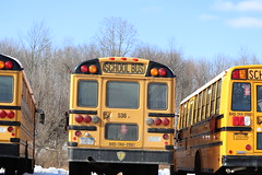 First Student #536 (ThoseGuys119) Tags: firststudentinc schoolbus pinebushny thomasbuilt dslr canon eos77d winter sunlight beautiful snow