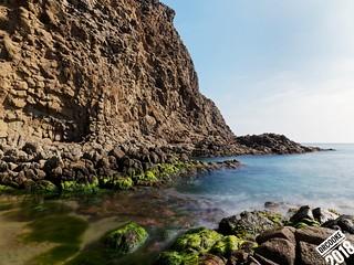 Basalto y algas