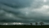 Grey days (Ron and Co.) Tags: sky clouds trees sun rays beams dark overcast landscape