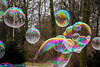 blowing bubbles (lufcwls) Tags: canon eos 500d rebel t1i berlin germany eu europe capital city bubbles bubble colour colours pretty fun