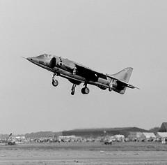 Hawker Harrier GR 1  XV752  52   233 OCU RAF Wittering (rac819) Tags: harrierxv752 hawkerharriergr1 233ocu wittering bigginhill airdisplay battleofbritaindisplay1971 rafbigginhill