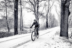 Non esistono condizioni meteo avverse, esistono solo atleti arrendevoli. (Bill Bowerman) (fil.nove) Tags: blackandwhite biancoenero monocromo monochrome neve snow alberi trees parco park mandria parcodellamandria mtb vtt mountainbike mountainbiking burian gelo inverno winter cycling bicycle sport outdoors people nature exercising healthylifestyle men action cyclist speed recreationalpursuit cycle lifestyles motion riding oneperson actionsport actionphoto canong7x compactcamera 1sensore turin torino piemonte italia vialealberato cannondaleflash29 falsh29 29er cannondale lefty