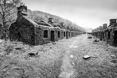 Once Was Home (ShrubMonkey (Julian Heritage)) Tags: angleseybarracks dinorwic dinorwig quarry accommodation building house path approach route abandoned derelict decay dereliction forsaken left ruin northwales wales snowdonia tree oncewashome