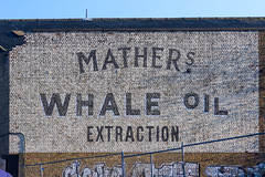 Mather's Whale Oil Extraction (johnlinford) Tags: canoneos7d docklands london londondocklands towerhamlets sign poster oldlondon trinitybuoywharf matherswhaleoilextraction advertising ancient advert landscape