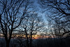 Tree silhouettes at sunset (Keartona) Tags: glossop woods silhouette trees bare branches sky sunset outline woodland derbyshire england blue