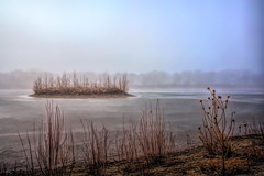 Golden Ponds Island in the fog (Clever Poet) Tags: fog foggy golden ponds longmont colorado early morning thick atmosphere island tiny waves