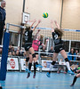 41170326 (roel.ubels) Tags: flynth fast nering bogel vc weert sint anthonis volleybal volleyball indoor sport topsport eredivisie 2018 activia hal