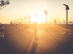 Golden rider. (Pablin79) Tags: sun sunset afternoon sky light sunrays colors golden goldenhour ride longboard girl woman shadows lanterns street outdoors posadas misiones argentina