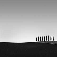 il nove (Gavin Dunbar Photography) Tags: italy tuscany trees mono monochrome zeiss nikon bw minimalist
