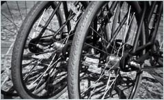 Fotografía Estenopeica (Pinhole Photography) (Black and White Fine Art) Tags: fotografiaestenopeica pinholephotography pinhole estenopo agujeropequeño camaraestenopeica pinholecamera homemadecamera sanjuan oldsanjuan viejosanjuan puertorico bicicleta bicycle rueda tire fotografiacallejera streetphotography