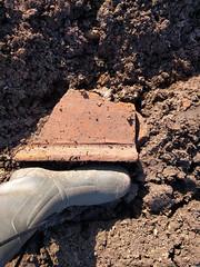 Tegula (Paramedix) Tags: archäologie archaeology tegula roman römisch germany deutschland badenwürttemberg feldbegehung fieldsurvey