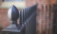 #HappyFenceFriday (KissThePixel) Tags: happyfencefriday friday happy fence ironfence bokeh macro focus 50mm nikkor12 f12 aperture light sunlight february wall street village cottage composition creativecomposition dof dofalicious stilllife stilllifephotography bokehlicious fencephotography