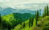 Serenity (Aasim Mukhtar) Tags: himalayas mountins kpk pakistan shogran siripaey
