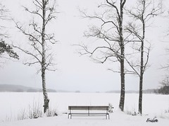 Viewpoint (The world in f stops) Tags: sweden sverige varmland europe winter ice frozen white black