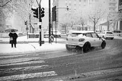 Neve in citta' (Mario Bertocchi) Tags: laspezia neve incrocio disagi strada auto corsa semaforo lavoro 2018 explore mariobertocchi blackwhite bn bw bianconero biancoenero