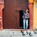 Pigeons in the Morning, Cartagena Colombia