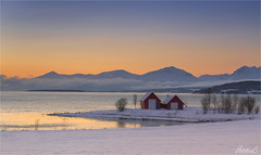 Winter Sunrise, Kvaløya, Troms, Norway (AdelheidS Photography) Tags: adelheidsphotography adelheidsmitt adelheidspictures norway norge noorwegen norwegen noruega norvegia nordic norvege norden northnorway sunrise snow winter winterbeauty sky bluehour troms kvaløy coastline coast scandinavia scenery scenic mountains ocean water 69°