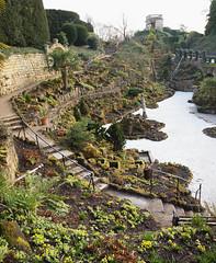 2018_02_0385 (petermit2) Tags: ferndale fern ferns tree brodsworthhall brodsworth doncaster southyorkshire yorkshire englishheritage garden gardens heritage heritagegarden
