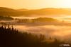 Golden Blanket (tristantinn) Tags: lakedistrict cumbria mist sunrise nature landscape magic gold cloud inversion