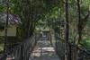 Treehouses (snej1972) Tags: urlaub holiday vacation vacanze thailad siam asien suedostasien qualitytime singleholiday asia djungle dschungel urwald fluss river boat boot kanu kajak elefant elephant nationalparc parque wood khaolak thailand