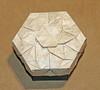 Merry-go-round tessellation box (mganans) Tags: origami tessellation box caja