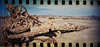 Nature conquers (kevin dooley) Tags: film bombaybeach saltonsea