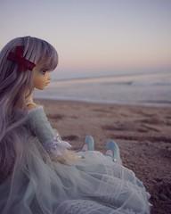 Lisibette (NoNoNanoon) Tags: fairyland faceups knitting photography bjdphotography harrypotter minifee mnf minifeeeva volks superdollfie minifeelucywen dayofthedead nature love family saints angels vampires magic witches beach sunseset diy fairies hp hogwarts dolls toys japan f08f05 f05 msd sd slimmsd