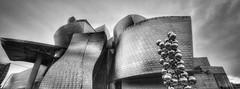 Arquitectura (Aránzazu Vel) Tags: ciudad city urban guggenheim museum museo bilbao paisvasco basquecountry blancoynegro biancoenero blackandwhite architecture arquitectura architettura monocromo spain españa art arte