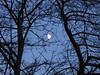 MOONRISE (mike ware) Tags: moonrise