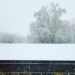 Snow - I appreciated it way more in December